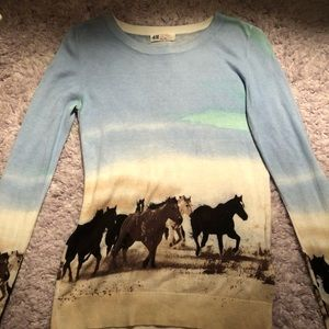 NWOT H&M Size XS Wild Horses Sweater